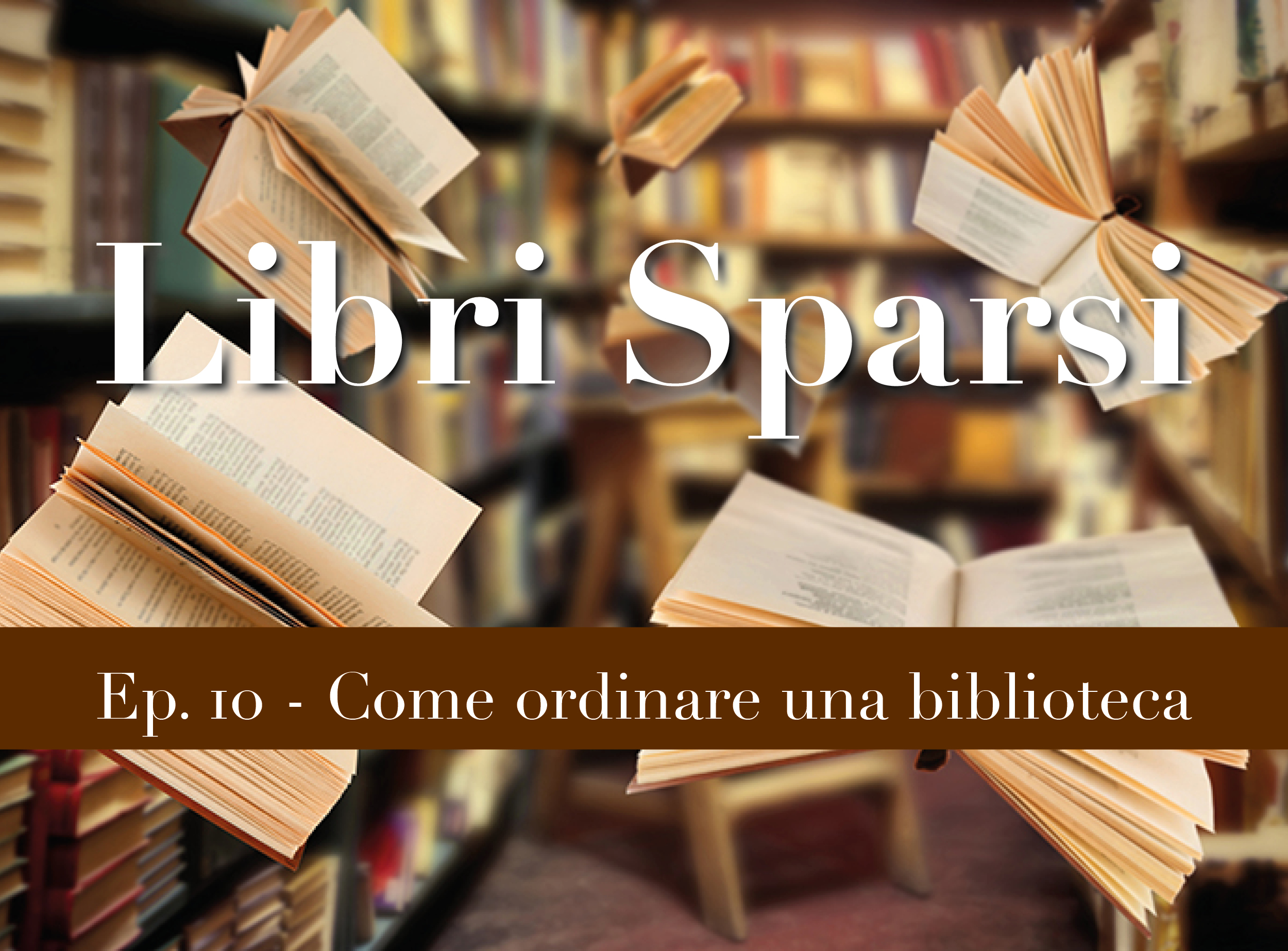 Ep. 10 - Come ordinare una biblioteca
